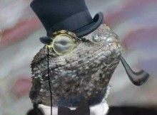 FCC fines Cox for falling for Lizard Squad scam, exposing customer data