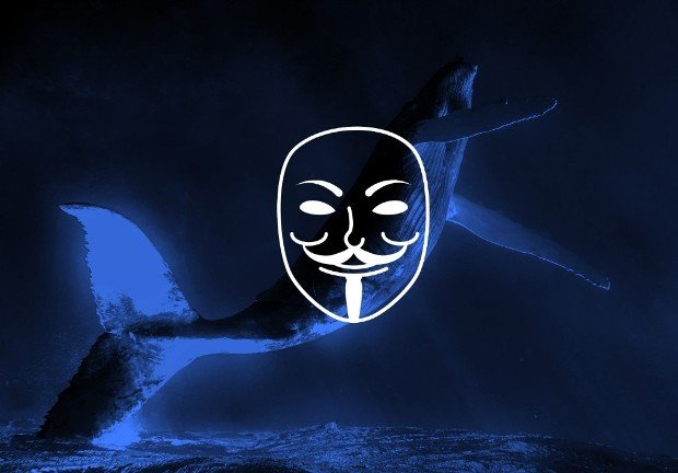 Anonymous Takes Down Five Government Websites in Iceland to Protest Whale Hunting