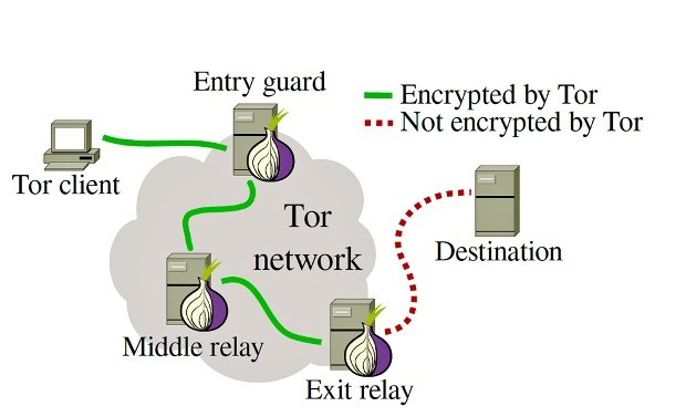 Tor takes aim against malicious nodes on the network