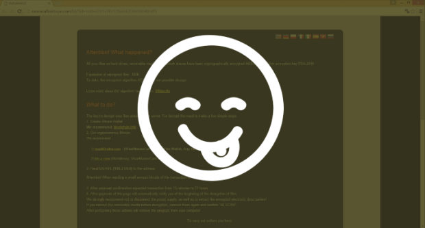 Researchers Trick Radamant Ransomware C&C Server into Revealing Decryption Keys