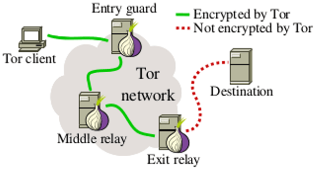 tor-network2