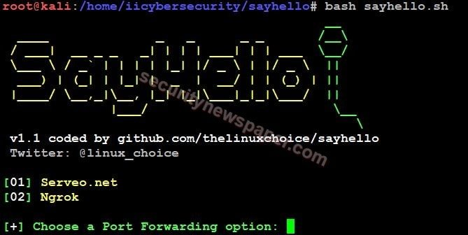 SayHello - Tool Launch
